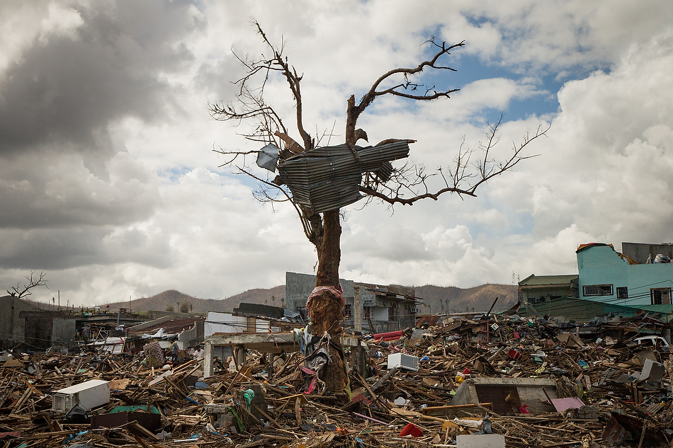 A tree damaged from Typhoon Haiyan is framed against a backdrop of destruction in Tacloban City, Leyte province, Philippines on Tuesday, Nov. 19, 2013. Photo by Erik M. Lunsford/LCMS