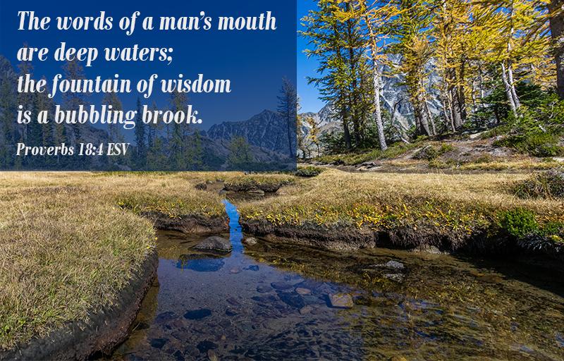 Proverbs 18:4