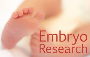 Embryo Research