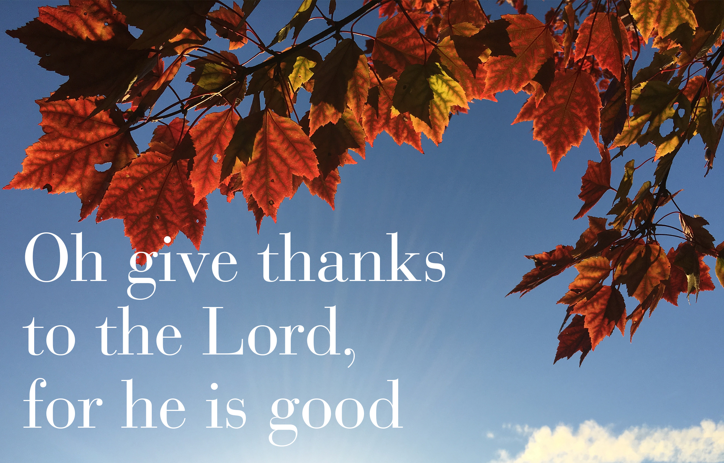 Psalm 106