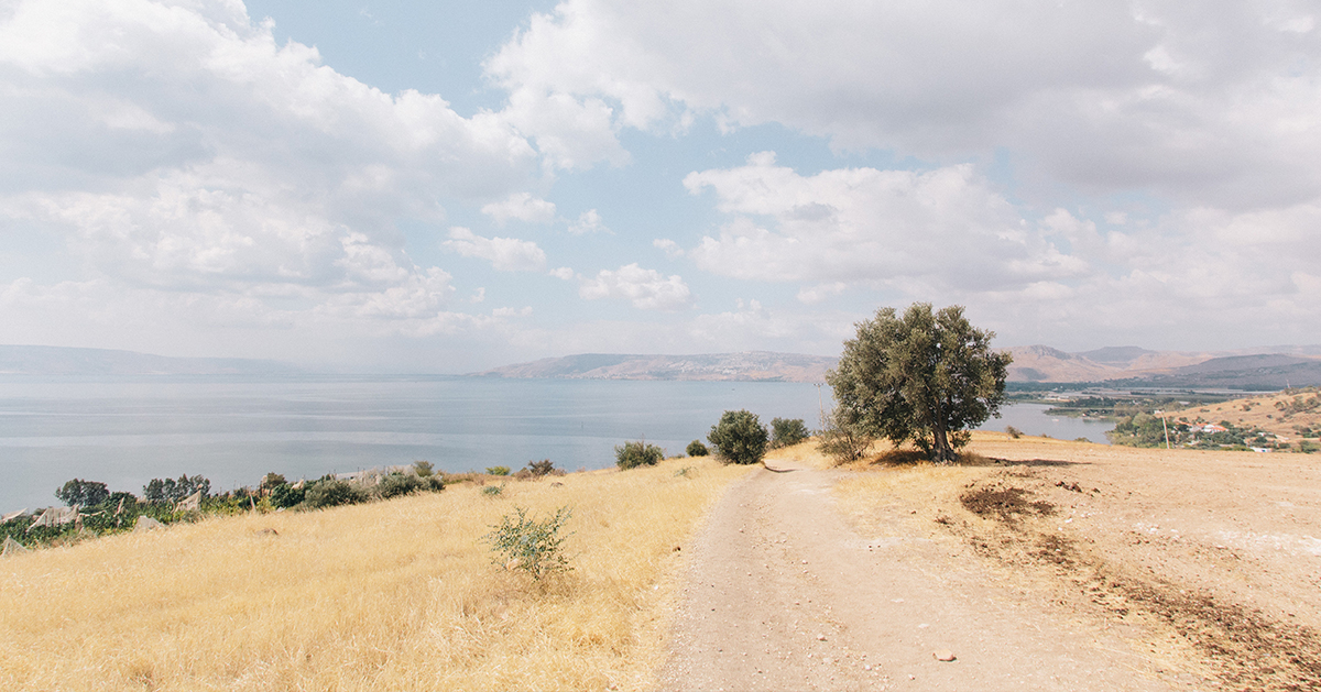 Rural road through a barren desert in Mount of Beatitudes